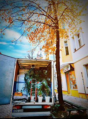 Umzug Berlin Siemensstadt kosten